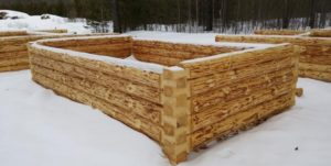 сруб из зимней древесины